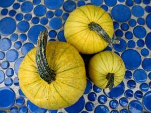 Yellow Pumpkins on Blue Tiles