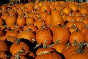 Pumpkins at a Crow Concert