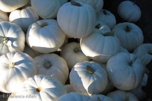 Ghost Pumpkins