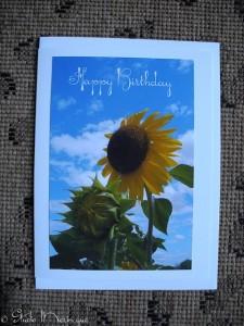Sunflower & Sky Greeting