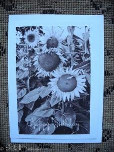 Sunflower Birthday Greeting