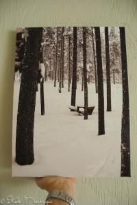 16 x 20 Canvas print of a Studio Meringue photograph!