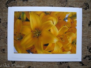 Ione's Mother's Day Lilies
