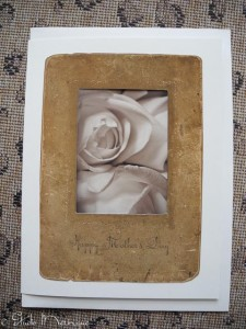 Antique Frame Roses for Mother's Day