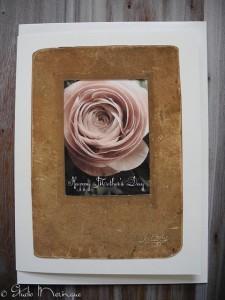 Antique Frame Ranunculus