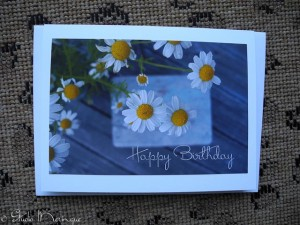 Daisy Birthday Wishes