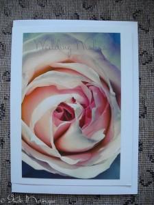 Rose Wedding Wishes