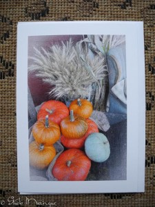 Pumpkins and Wheat, Autumn at Vintage Roost