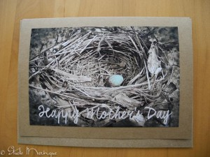 Hand-tinted Egg in a Nest